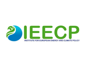 IEECP - Institute for European Energy and Climate Policy